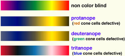 regenboog kleuren en hoe kleurenblinde mensen ze zien