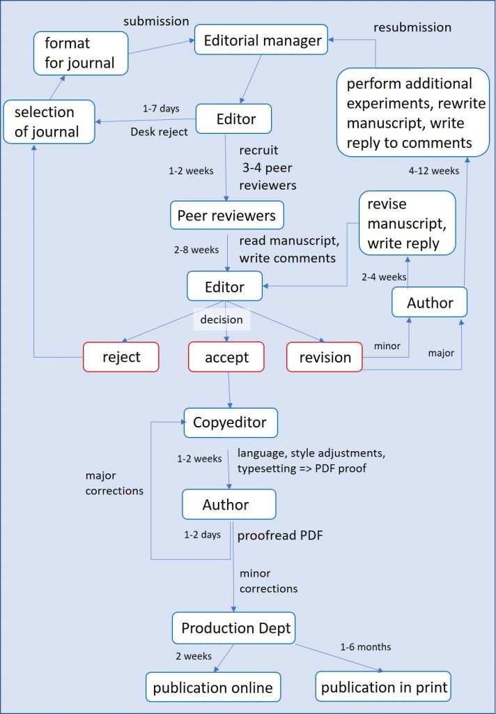Publication process from submission to acceptance